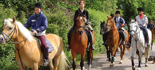 Veranstaltungsbild für »Reiterlager« lädt …